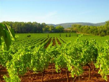 Saint-Émilion Gironde landgoed foto 4686165