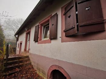 Wingen-sur-Moder Bas-Rhin Haus Bild 4712019