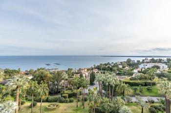 Cannes Alpes-Maritimes maison photo 4680515