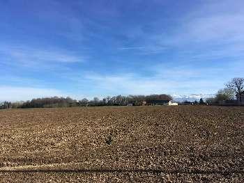 Ger Pyrénées-Atlantiques terrain picture 4784818