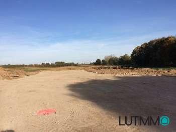 Bollwiller Haut-Rhin terrain picture 4797853
