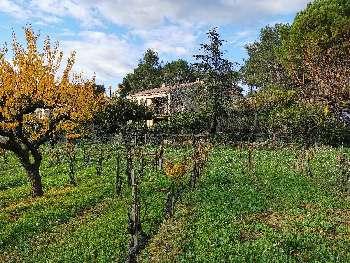 Fourneaux-le-Val Calvados villa picture 4811569