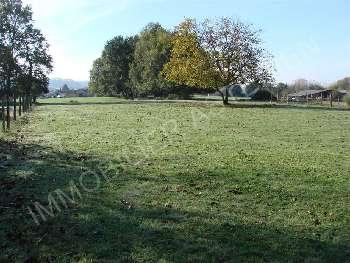 Neuvic Dordogne Grundstück Bild 4877014