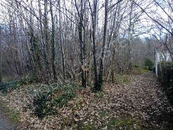 Annesse-et-Beaulieu Dordogne terrein foto 4877050