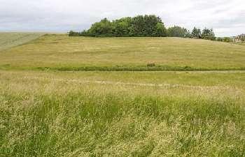 Prez Ardennes Grundstück Bild 4987646