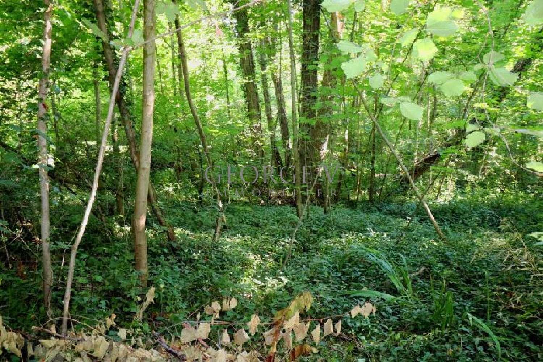 Valmondois Val-d'Oise terrein foto 5054943