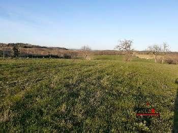 Esperce Haute-Garonne terrain photo 5055605