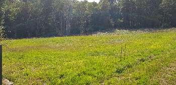 Saint-Nabord Vosges terrain picture 5052270
