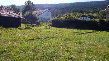 Saulxures-sur-Moselotte Vosges terrain picture 5052684