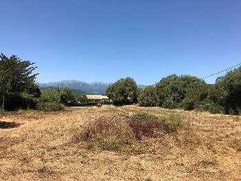 Prunelli-di-Fiumorbo Haute-Corse terrain photo 5037803