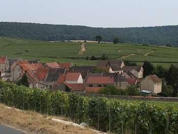 Leuvrigny Marne terrain picture 5112047