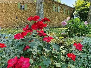 gîtes/ chambres d'hôtes, Lacapelle-Ségalar, Tarn