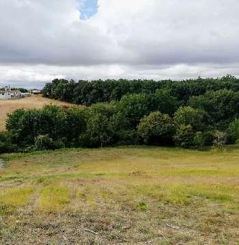 Pechbonnieu Haute-Garonne terrain picture 5399095