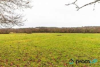 Boisredon Charente-Maritime Grundstück Bild 5410160
