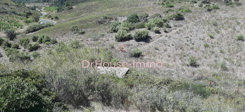 Maury Pyrénées-Orientales terrain photo 5788217