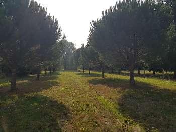 Jouhet Vienne terrein foto 5782532