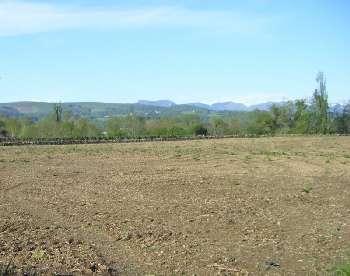 Tarbes Hautes-Pyrénées terrain picture 5781143