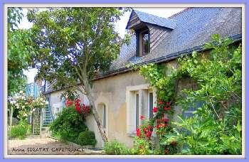 Courdemanche Sarthe farm picture 5450454