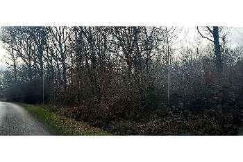 Chuelles Loiret maison photo 5471886