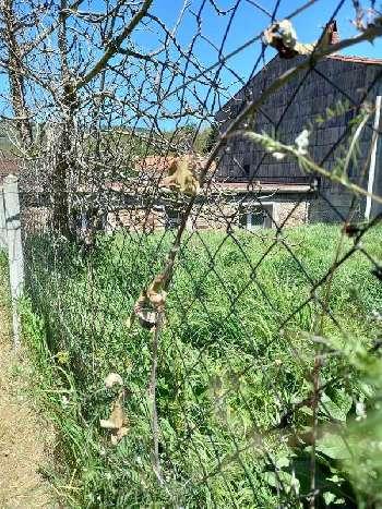 Saint-Amans-Soult Tarn house picture 5578051