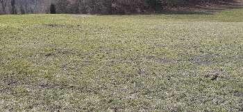 Valfin-lès-Saint-Claude Jura terrain photo 5558131