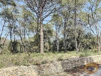 Nîmes Gard terrain picture 5554412