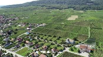 Pfaffenheim Haut-Rhin appartement foto 5669574