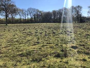 Nouic Haute-Vienne terrain picture 5683948