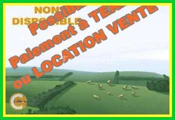 Bélâbre Indre terrain picture 5720351